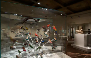 Exhibition display of shoes with stuffed birds on metal plinths